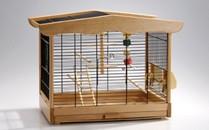 cage_oiseau