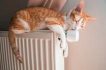 comment économiser avec un bon chauffage